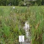 Environmental monitoring station